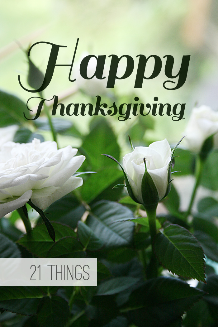 Happy Thanksgiving - 21 things to be grateful for this week